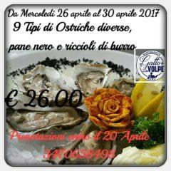 ostriche 9 tipi